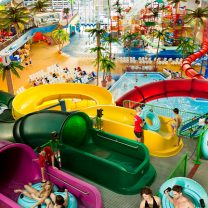 Experience the Tube Tower featuring four tube slides!